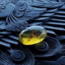 缅甸精品蜘蛛珀