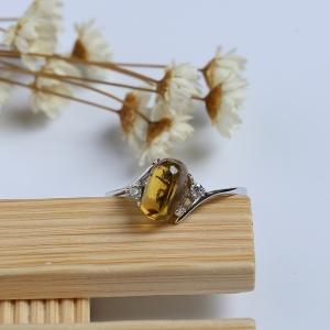 银镶精品甲虫珀戒指