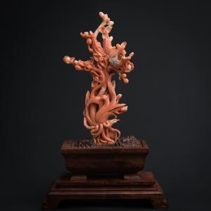 MOMO橘色珊瑚蘭花擺件