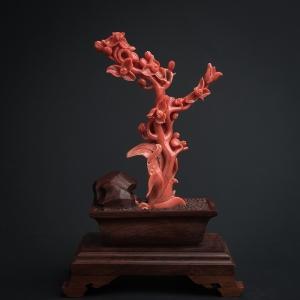 MOMO橘紅珊瑚蘭花擺件