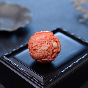 MOMO珊瑚龙珠