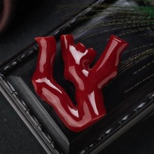 阿卡牛血紅珊瑚原枝
