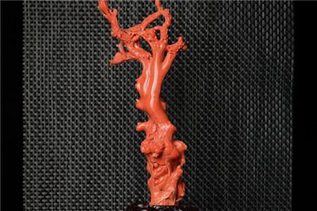 如何鉴别红珊瑚真假,红珊瑚鉴别图文分析