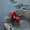 天然阿卡珊瑚原枝-红掌柜