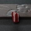 阿卡黑红珊瑚原枝-红掌柜