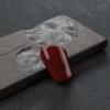 阿卡黑红珊瑚-红掌柜