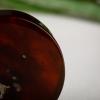 缅甸茶珀手镯-红掌柜