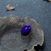 天然深蓝色青金石蛋面形戒面-红掌柜
