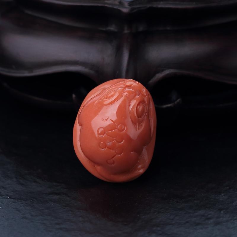 台湾天然MOMO橘色珊瑚三足金蟾吊坠-红掌柜