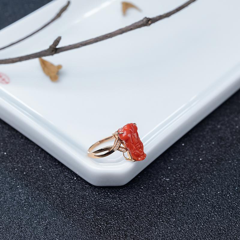 18K阿卡朱紅珊瑚貔貅戒指-紅掌柜