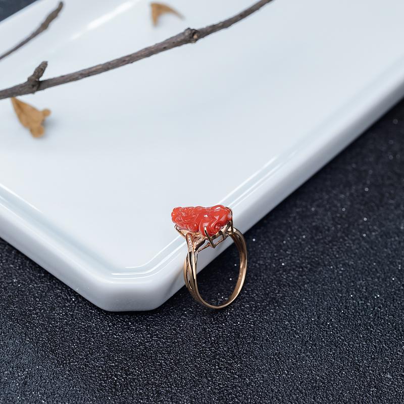 阿卡天然珊瑚貔貅戒指-紅掌柜