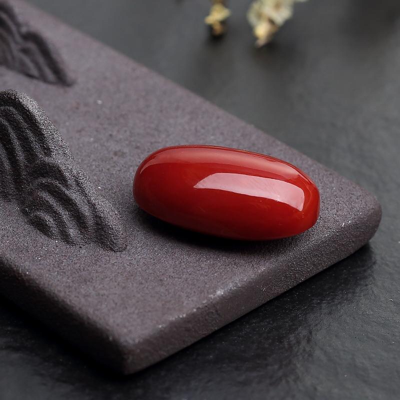 日本天然阿卡珊瑚蛋面形戒面-红掌柜