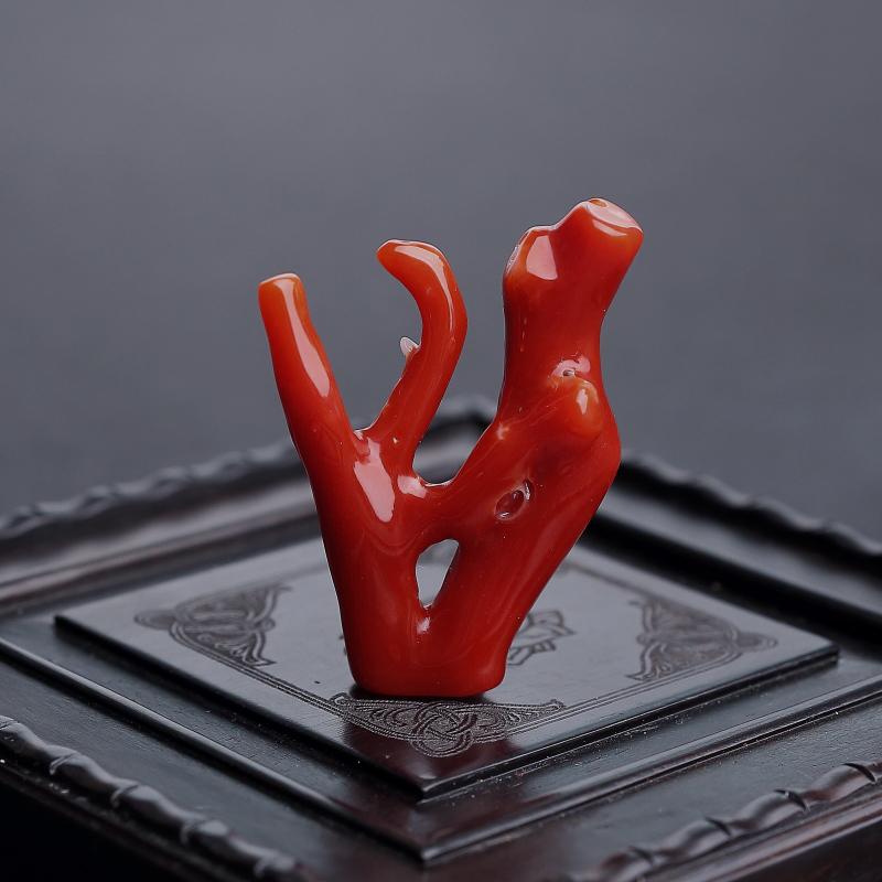 日本天然阿卡正紅珊瑚原枝 - 紅掌柜