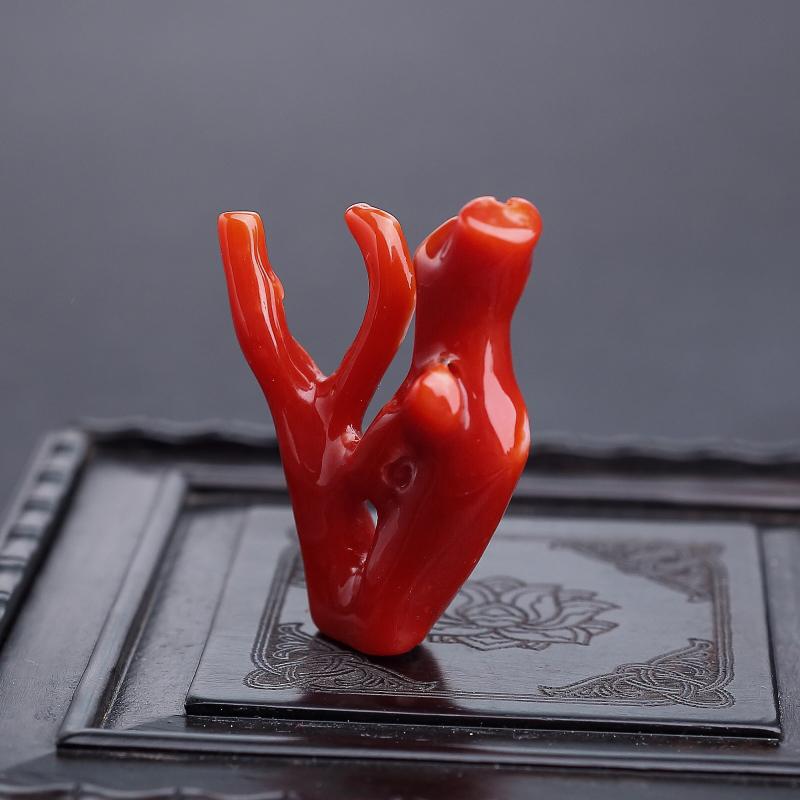 阿卡正紅珊瑚原枝 - 紅掌柜