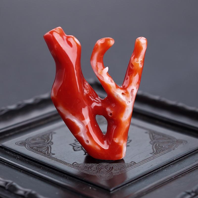 阿卡紅珊瑚原枝 - 紅掌柜