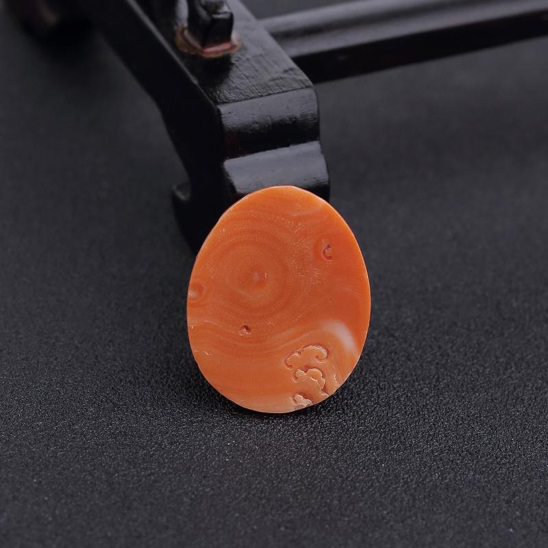台湾天然橘色珊瑚猪吊坠-红掌柜